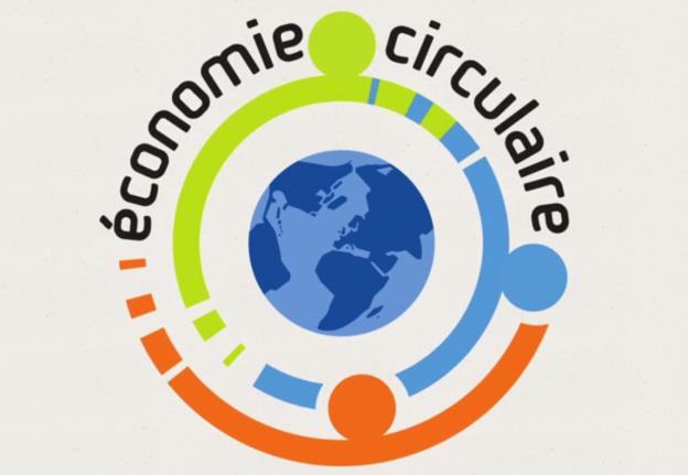 EcoCric-1